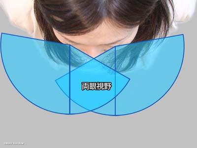 視野と盲点5